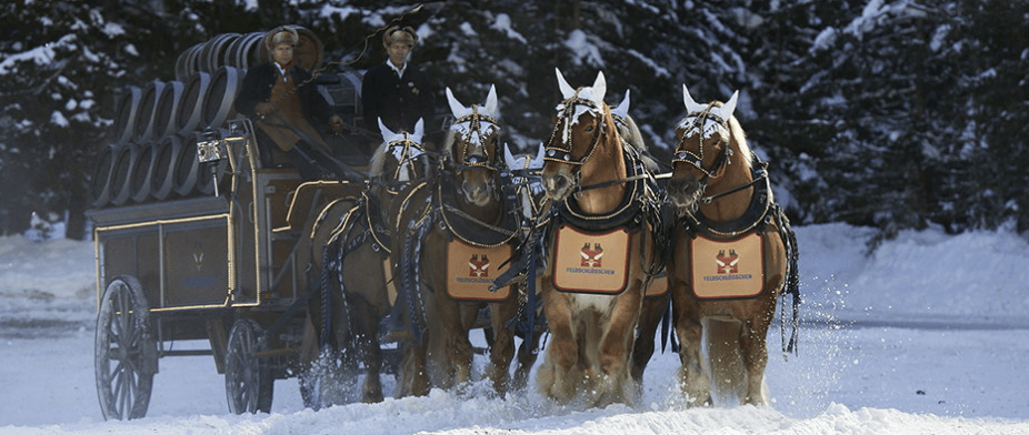 Horses of the Beer Factory