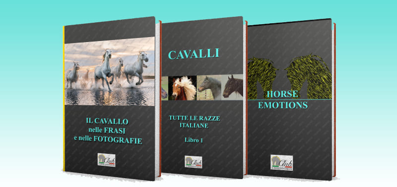Our books on horses